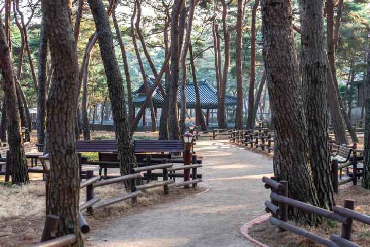 (3-2) 솔밭근린공원.jpg