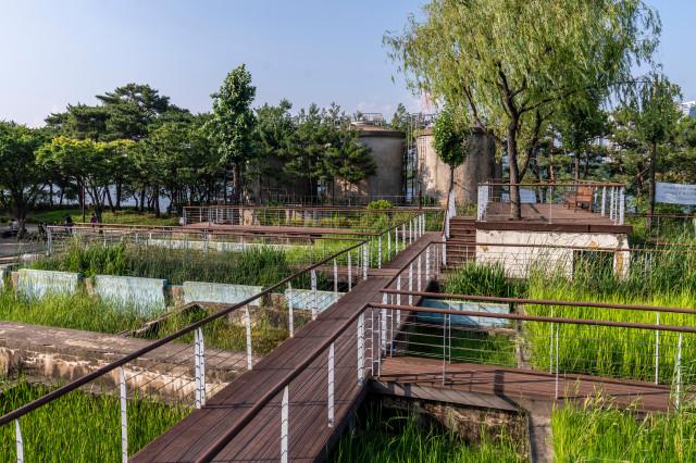 (1-2) 선유도공원_수질정화원_수생식물들이 식재된 계단식 수조를 거치면서 물이 정화되는 과정을 관찰할 수 있다..jpg