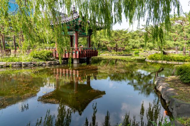 (2-2) 여의도공원_한국전통의 숲_구역의 지당연못과 사모정. 지당연못에 잉어 떼가 산다..jpg